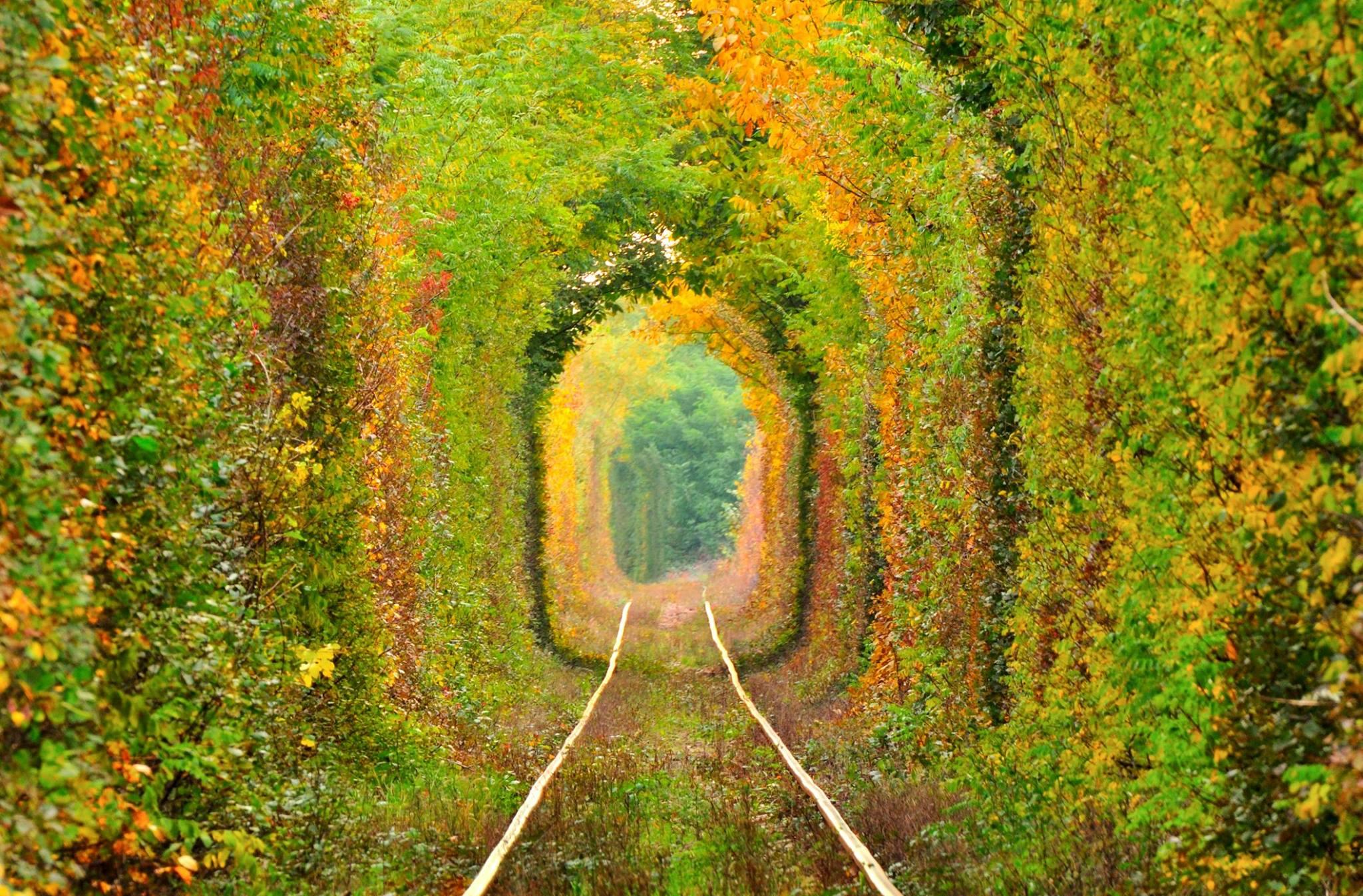 Tunelul Iubirii, locul din România căutat pentru cele mai romantice fotografii