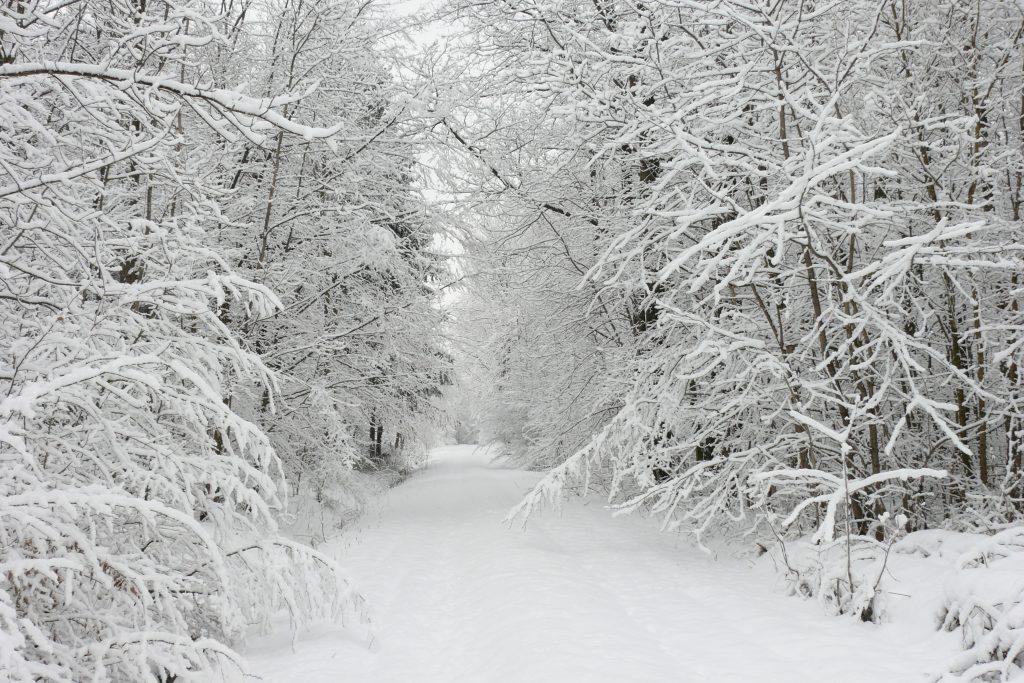 6989685 beautiful winter snow hd backgrounds