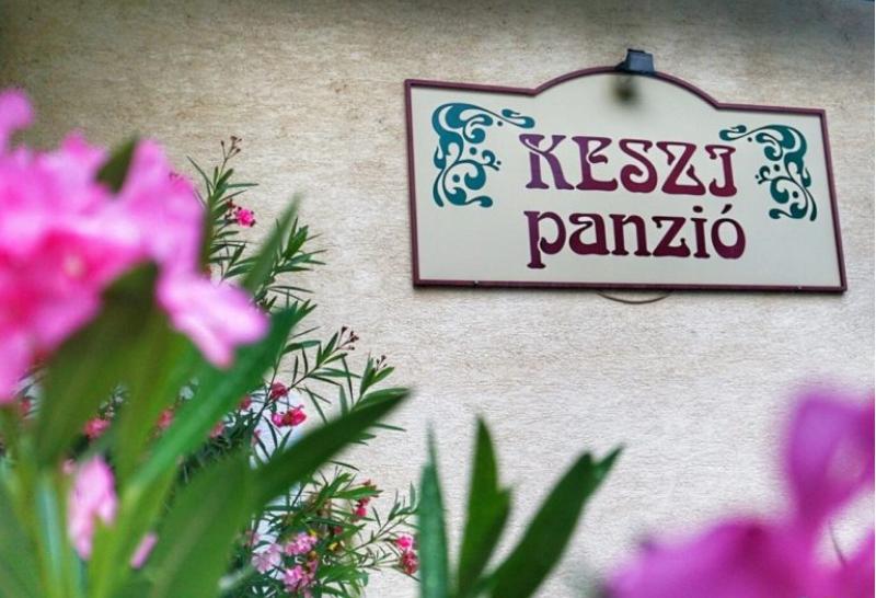 Cazare lângă Budapesta: review Keszi Panzio – pensiunea cu flori şi căprioare