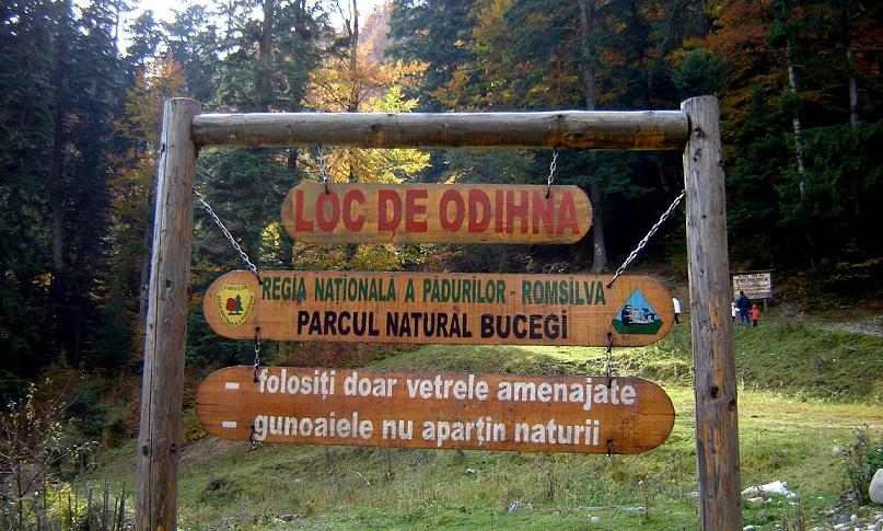 Care sunt parcurile și rezervațiile protejate din România?
