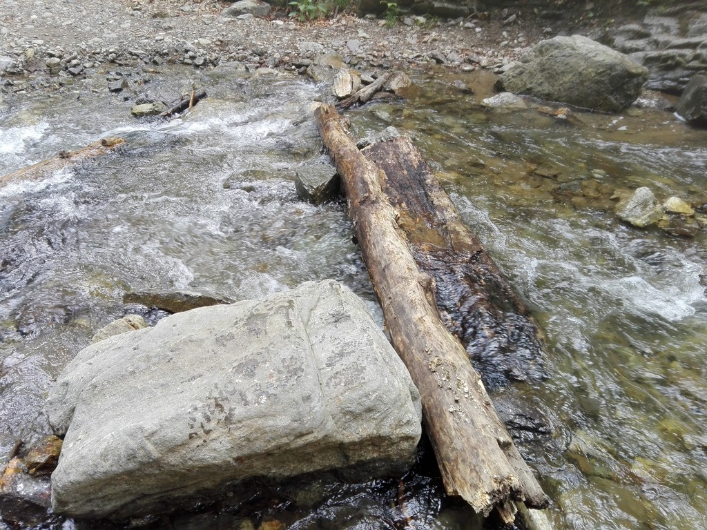 Cascada Scorusu1