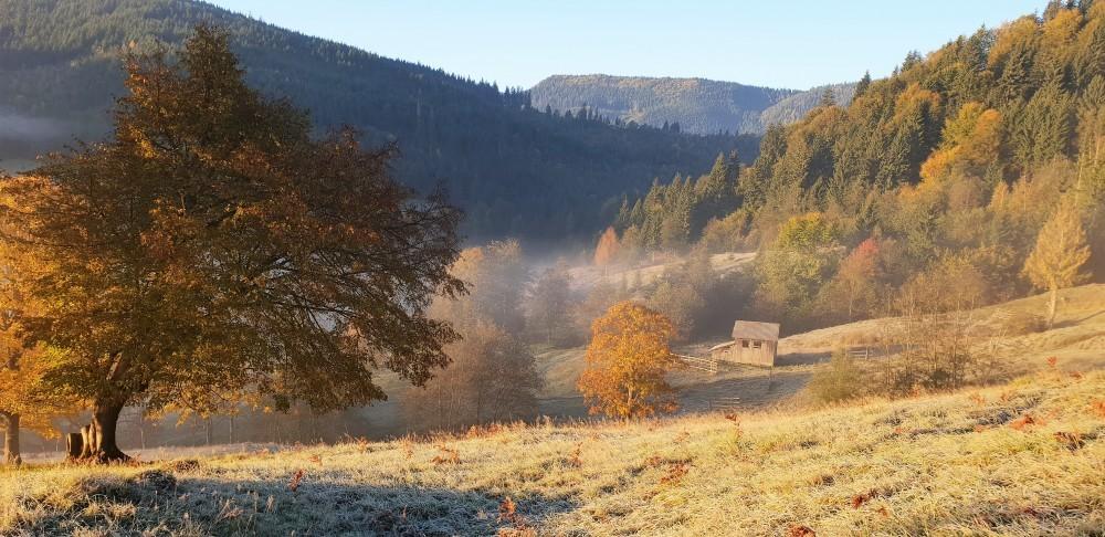Drumetie montana in Vama (Suceava)