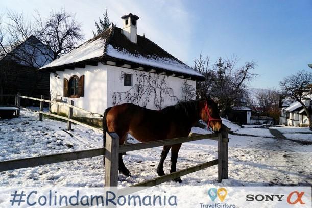 141Guesthouse Contele Kalnoky Miclosoara Covasna Romania by TravelGirlsRo