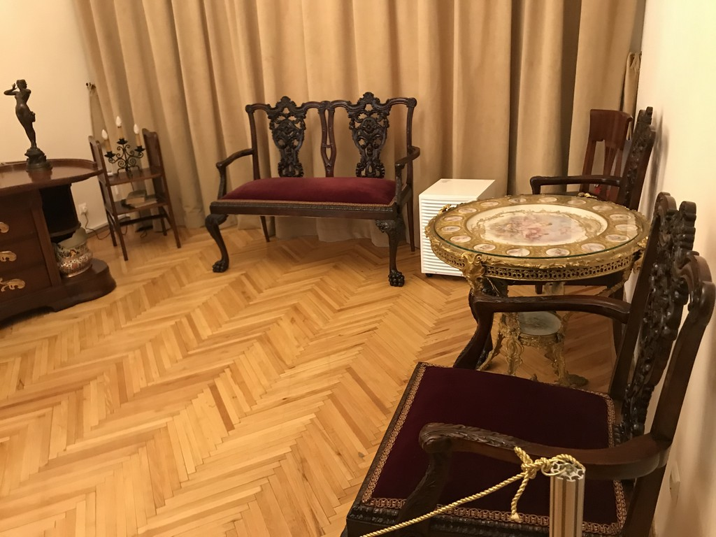 Muzeul profesor doctor Victor Babes obiective turistice Bucuresti Romania 20