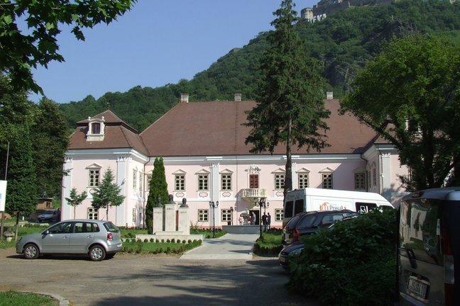 castelul magna curia