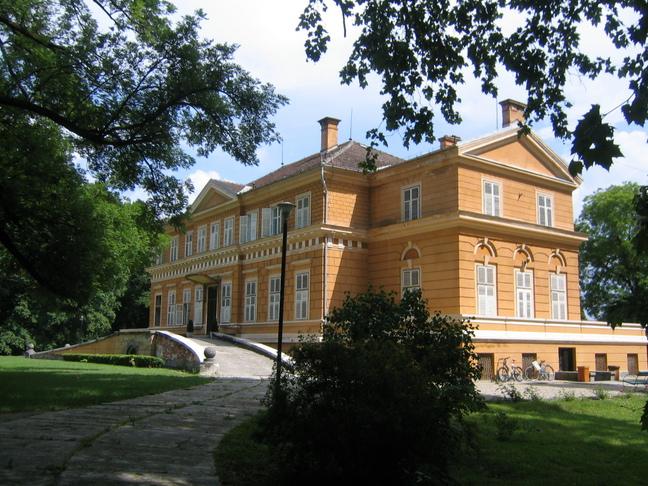 castelul regal de la savarsin3