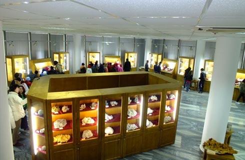 muzee unice romania 2