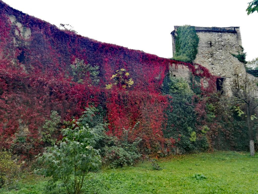 Biserica fortificata Cristian obiective turistice Brasov Romania 60