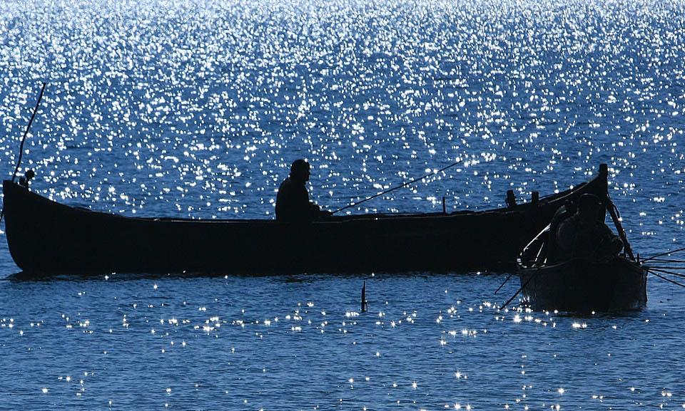 fishing 311