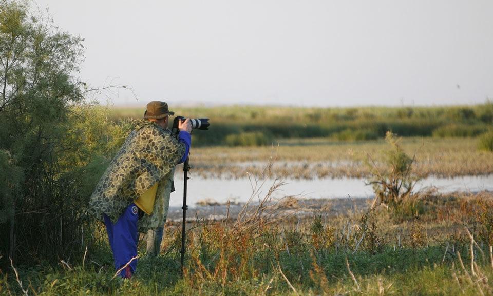 photo safari 211