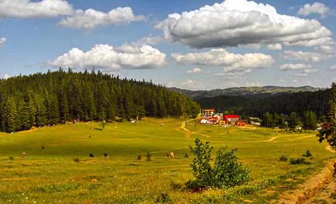 Statiunea Soveja din comuna Soveja judetul Vrancea flickr