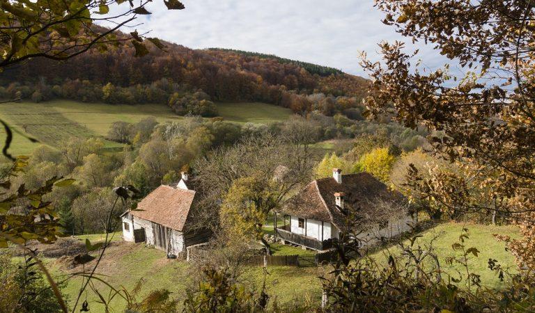 Vacanță regală în Valea Zălanului
