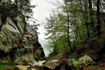 cascada saritoarea 2