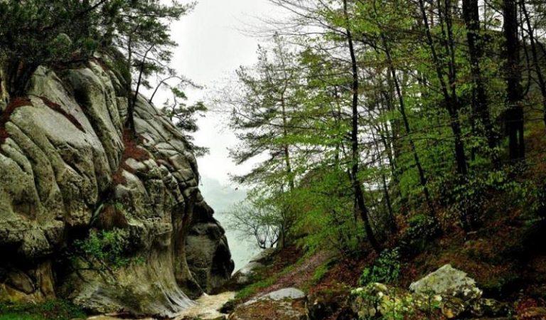 Cascada Săritoarea