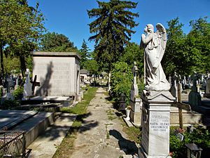 Cimitirul Bellu 8
