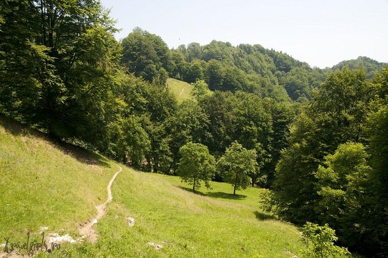 Drumul spre Manastirea Patrunsa 1