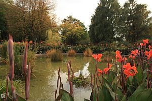 The small pond in the Iasi Botanical Garden autumn 2015
