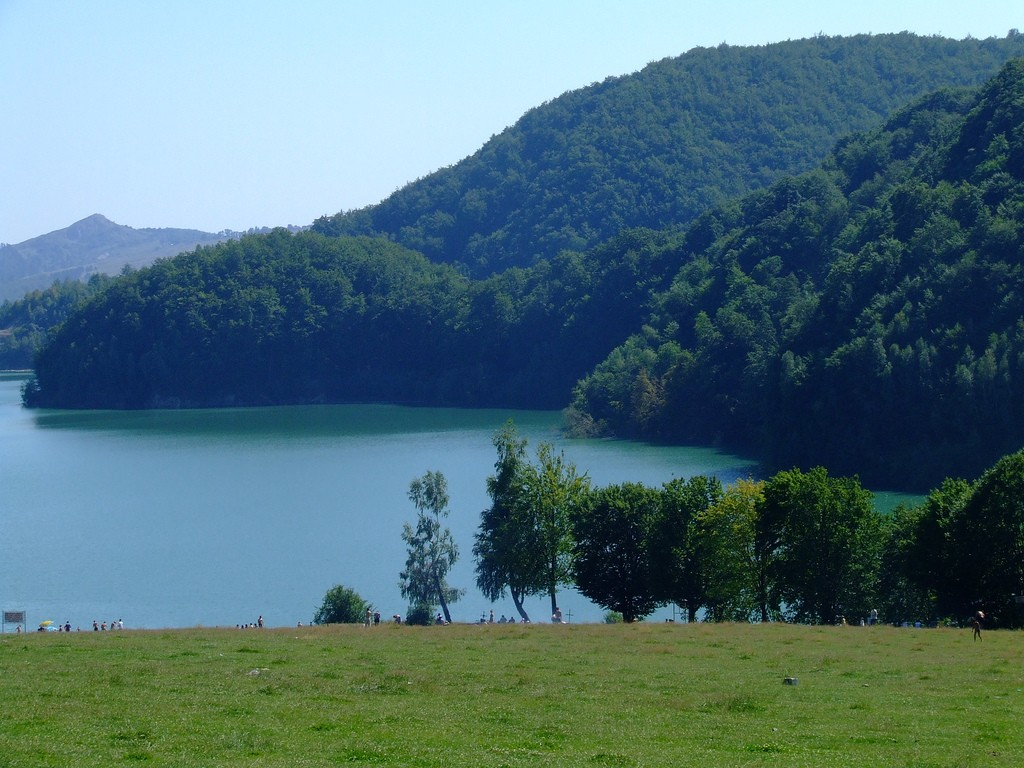 Lacul Paltinu 3 1024x768 1