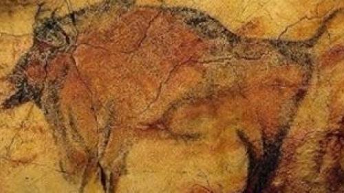 cele mai vechi desene rupestre din lume in pestera coliboaia din bihor au peste 30 000 de ani 17157