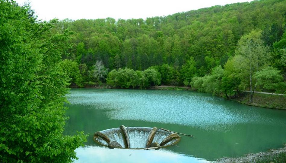 lacul vida1