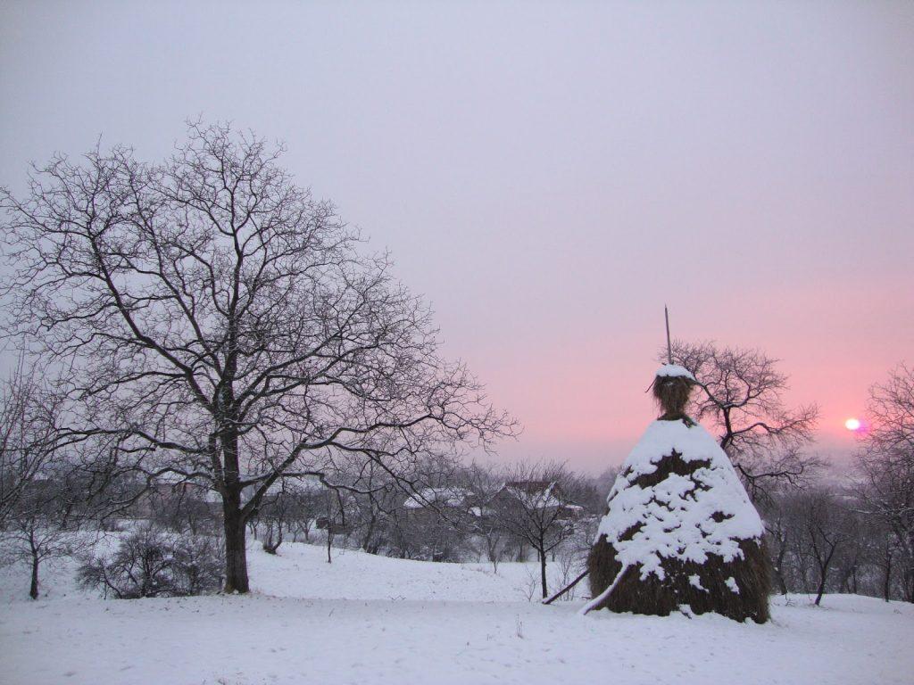 Peisaj de iarna Maramures 1024x768 1