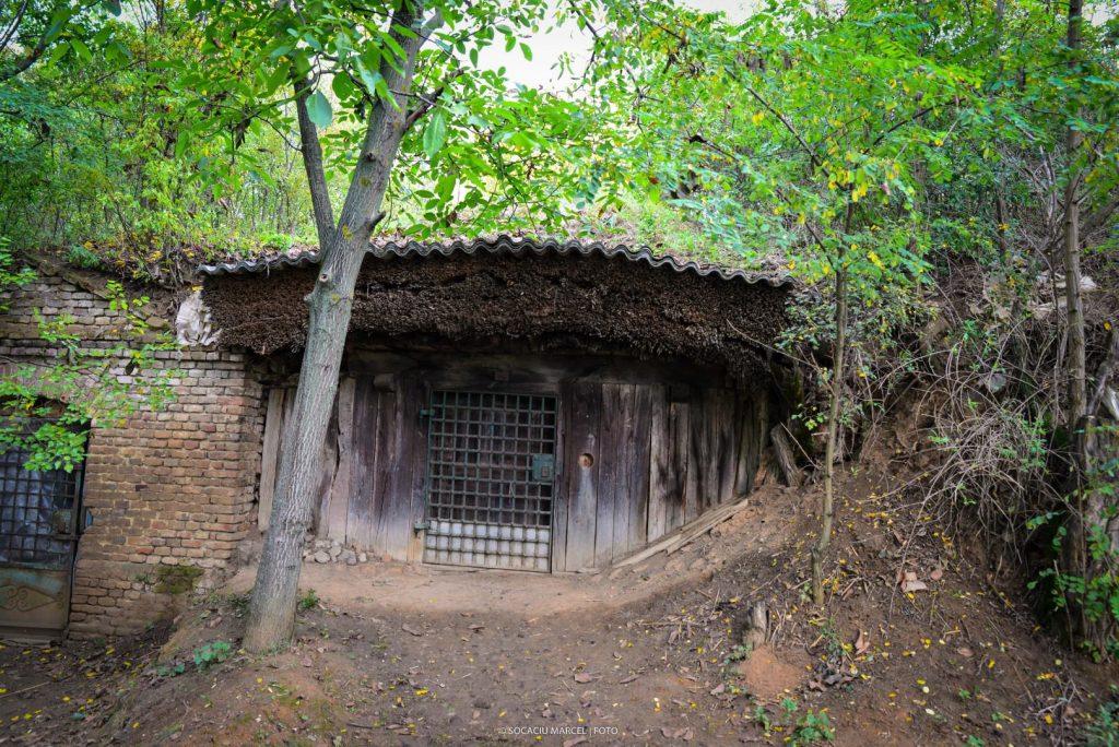 Salacea – satul celor 1000 de pivnite01 1024x684 1