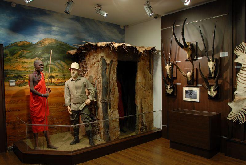 muzeu vanatoare 5