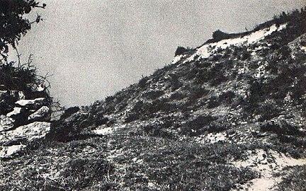 432px Locul unde se presupune ca a fost descoperit Tezaurul de la Pietroasa