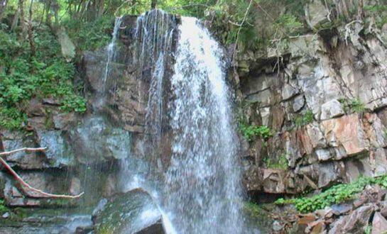 Cascada Misina din comuna Nistoresti biodiversitate 545x330 1