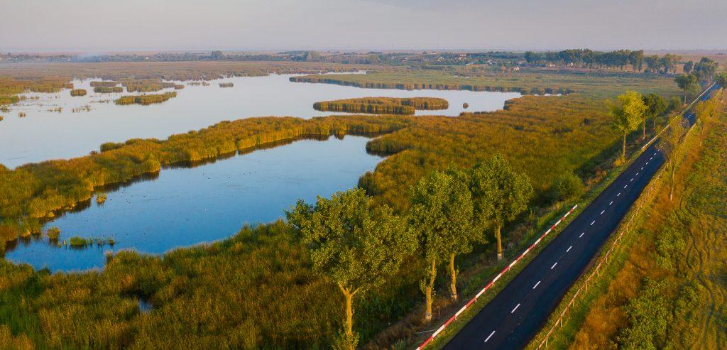 Parcul Natural Comana fotografii din drona 8
