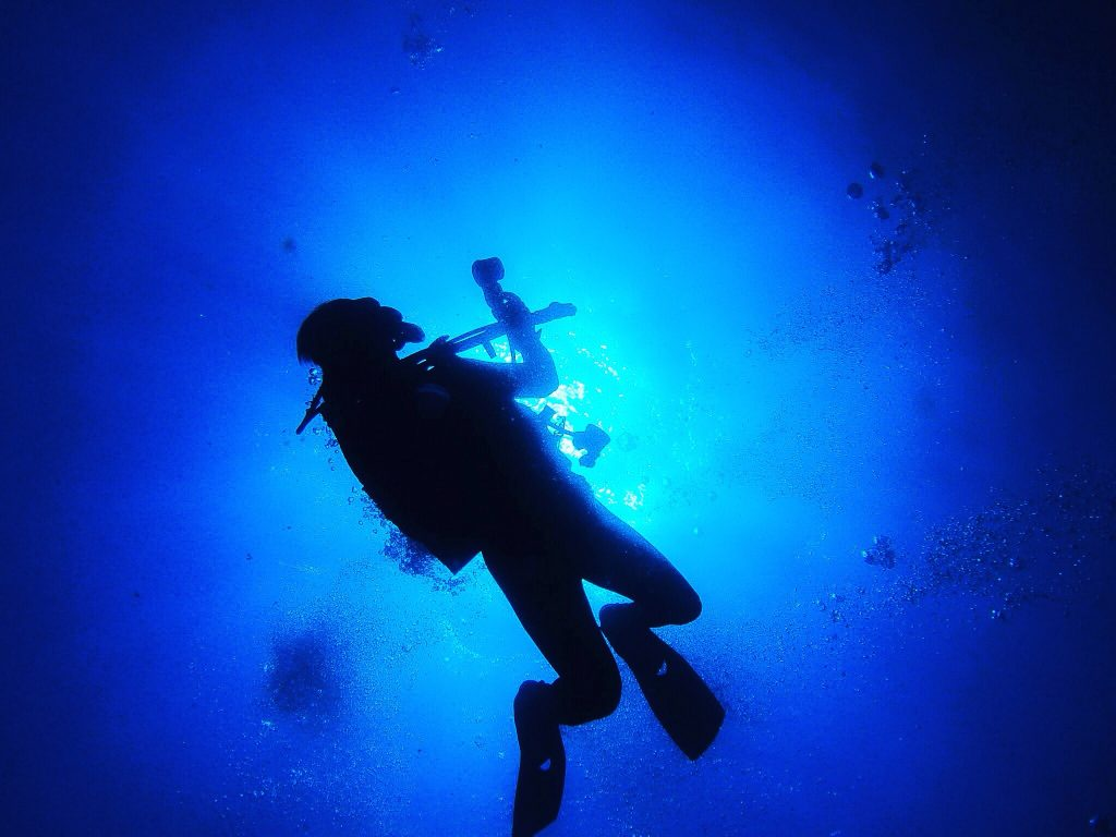 diver silhouette t20 OoYoWL