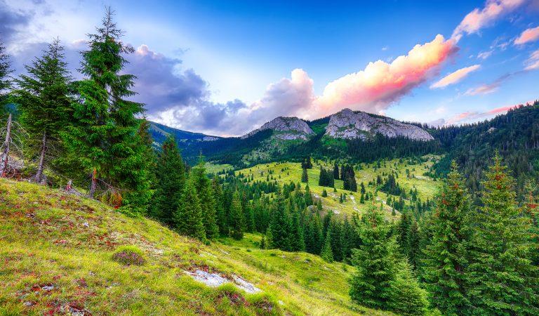 Pietrele Albe – prețioasele din Apuseni