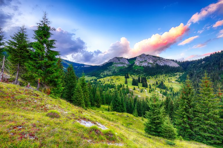 view of pietrele albe mountaine peak at summer tim 8DTSVC8