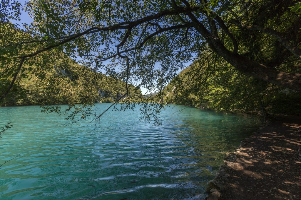 plitvice lakes national park in croatia the national park is world famous for its lakes currently 16 t20 g8vo1G
