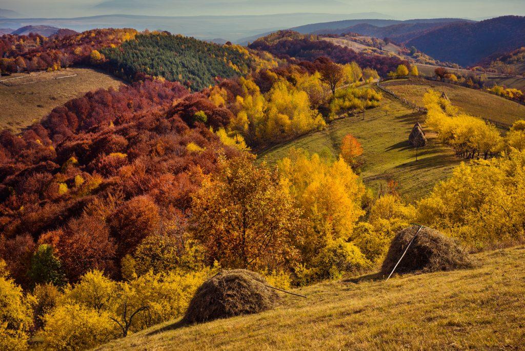 fall in the mountains autumn in transylvania roman PCM52YM