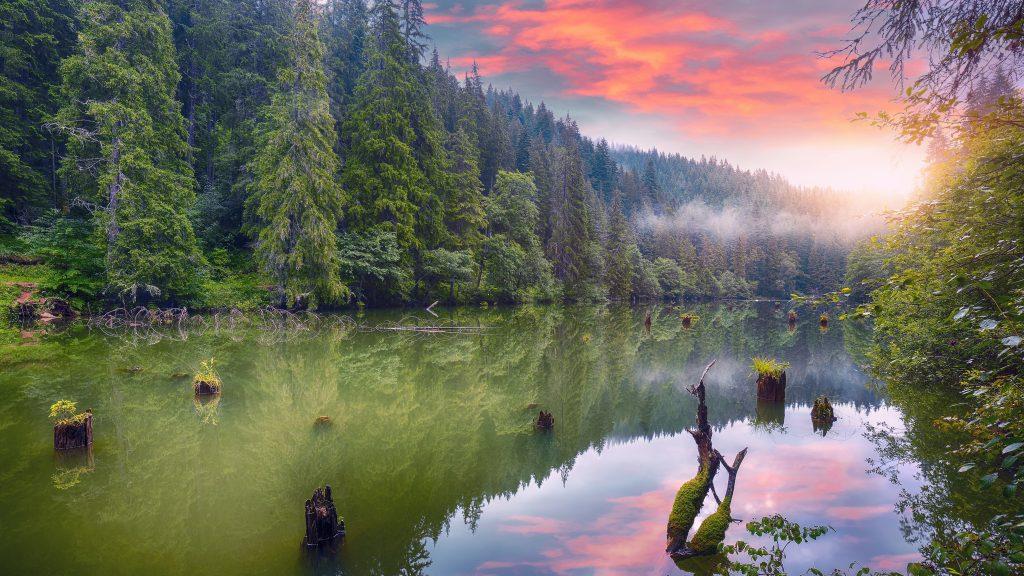 majestic summer view of mountain lake lacul rosu o ZEVVFUA