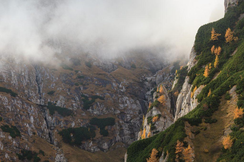 mountain valley in the bucegi mountains romania PPUR6WE