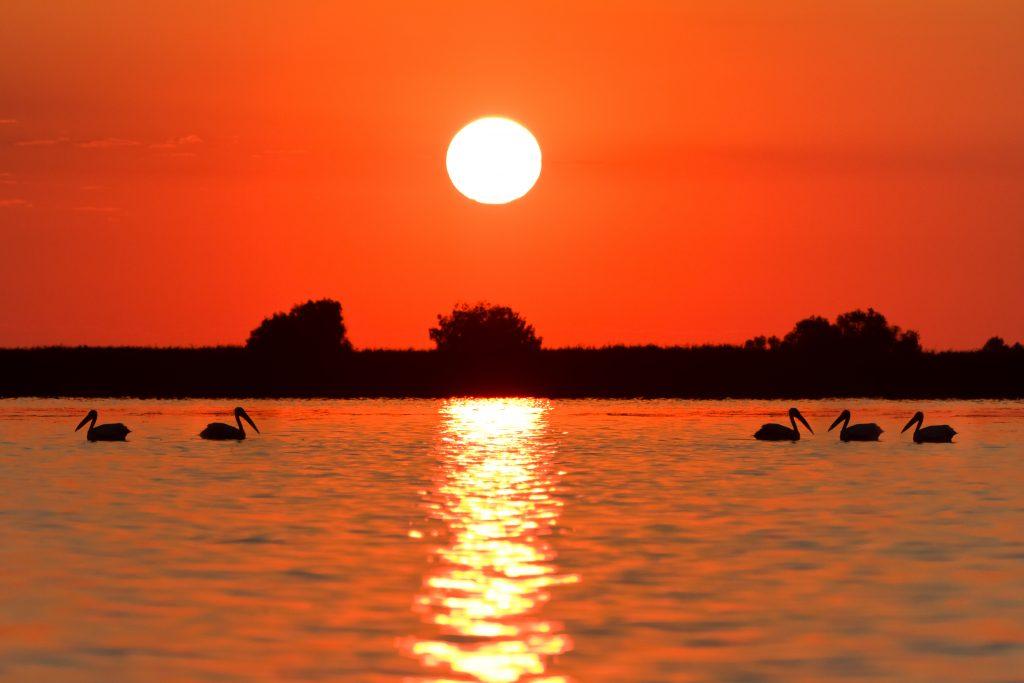 sunrise in the danube delta PZEX2R2