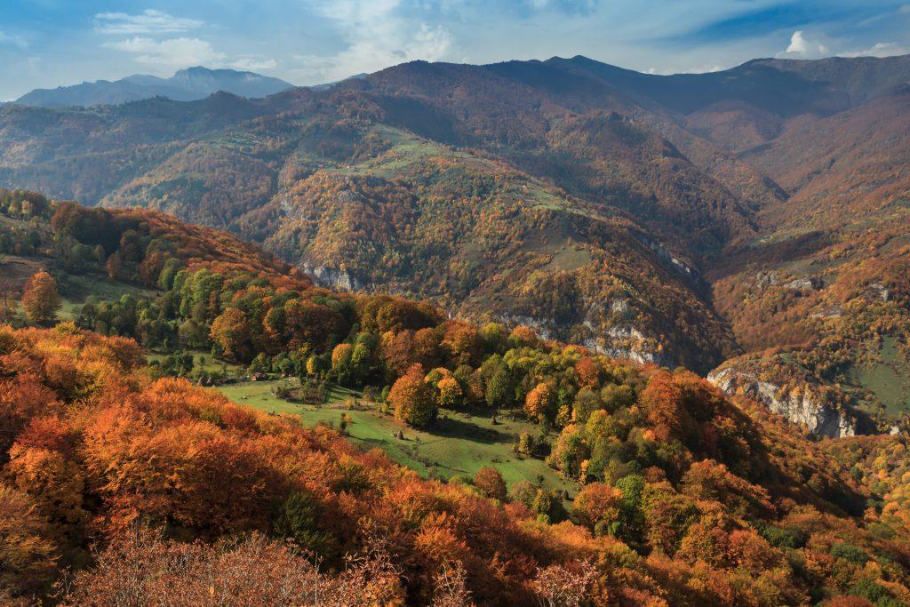 autumn landscape P2VAJN9