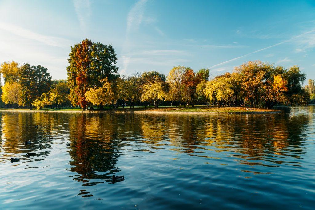 autumn season in bucharest park landscape 7DENAQ9