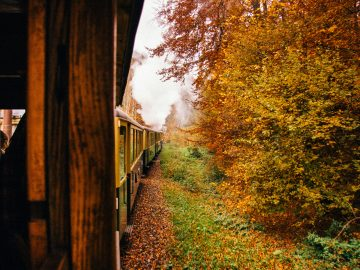 steam train route along a wild valley in maramures AZG8RUL