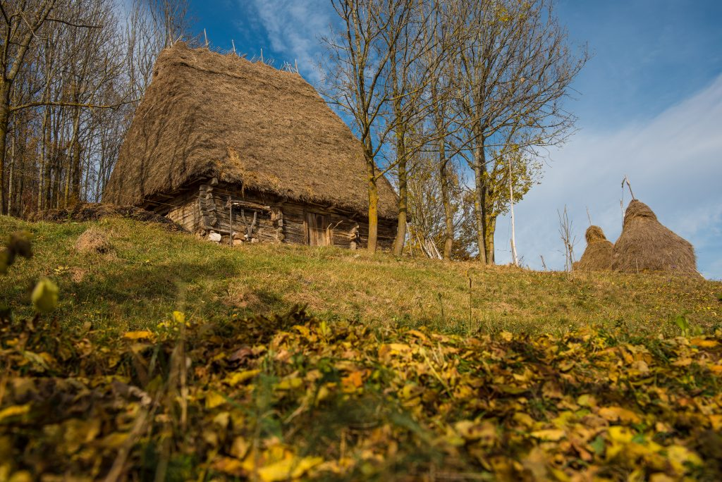 wooden barn in the autumn with thatched roof trans P4LEQK3